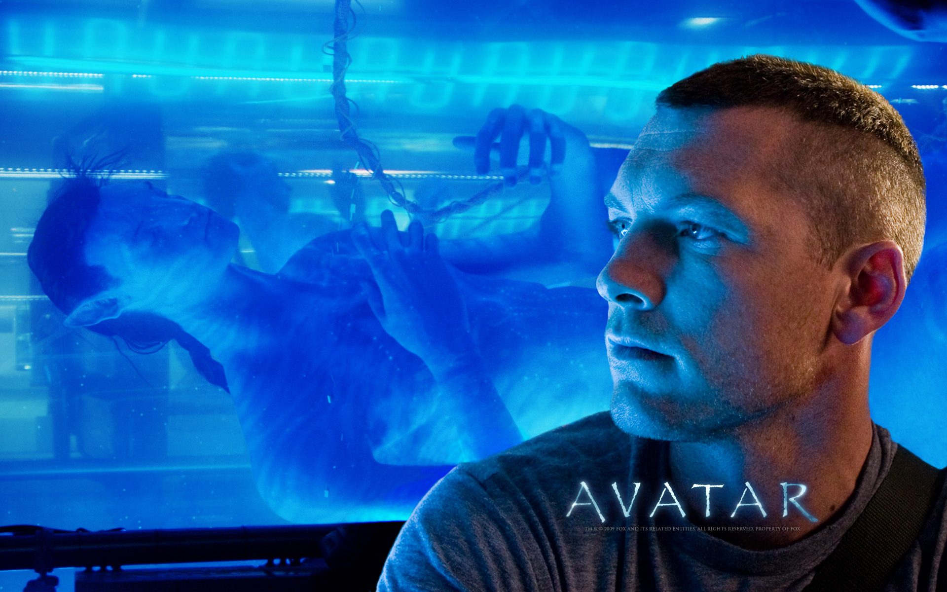 Avatar: Amazing HD Wallpapers Of The 3D Epic Movie Avatar
