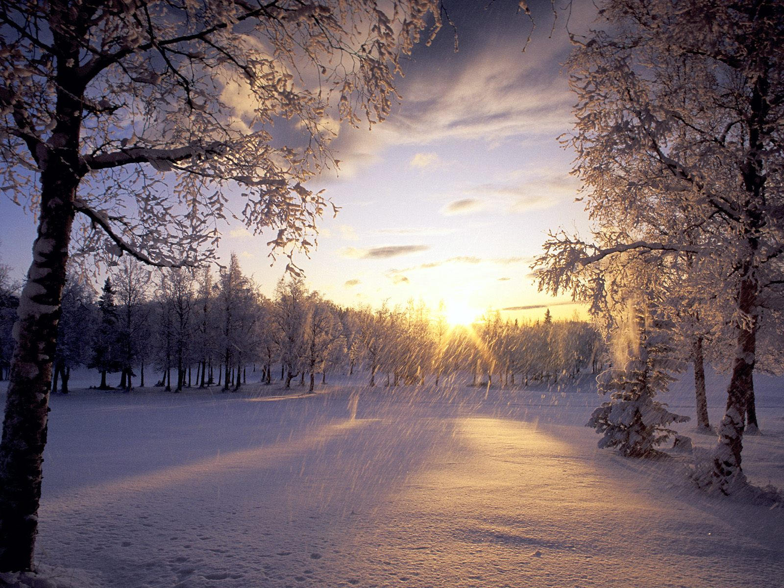 Beautiful christmas pictures and graphics free to enter Beautiful snowfall pictures