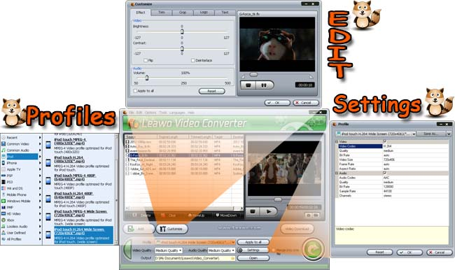 Leawo Video Converter (click to view large size)