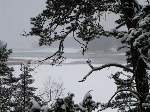 Wallpaper-winter-landscape-finland in Beautiful Christmas Pictures and Creative Christmas Designs