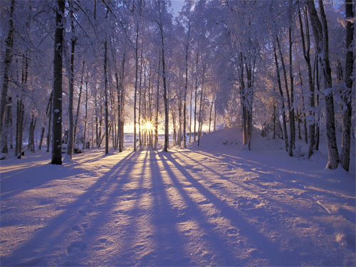 Wallpaper-winter-sunset-alaska in Beautiful Christmas Pictures and Creative Christmas Designs