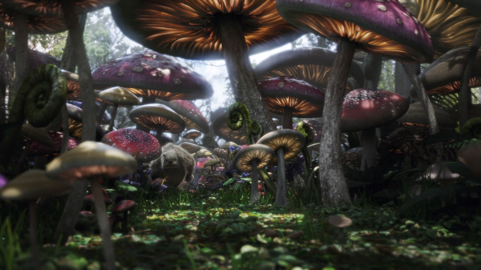 Alice in Wonderland Mushroom Forest 1920 x 1080 · 273 kB · jpeg