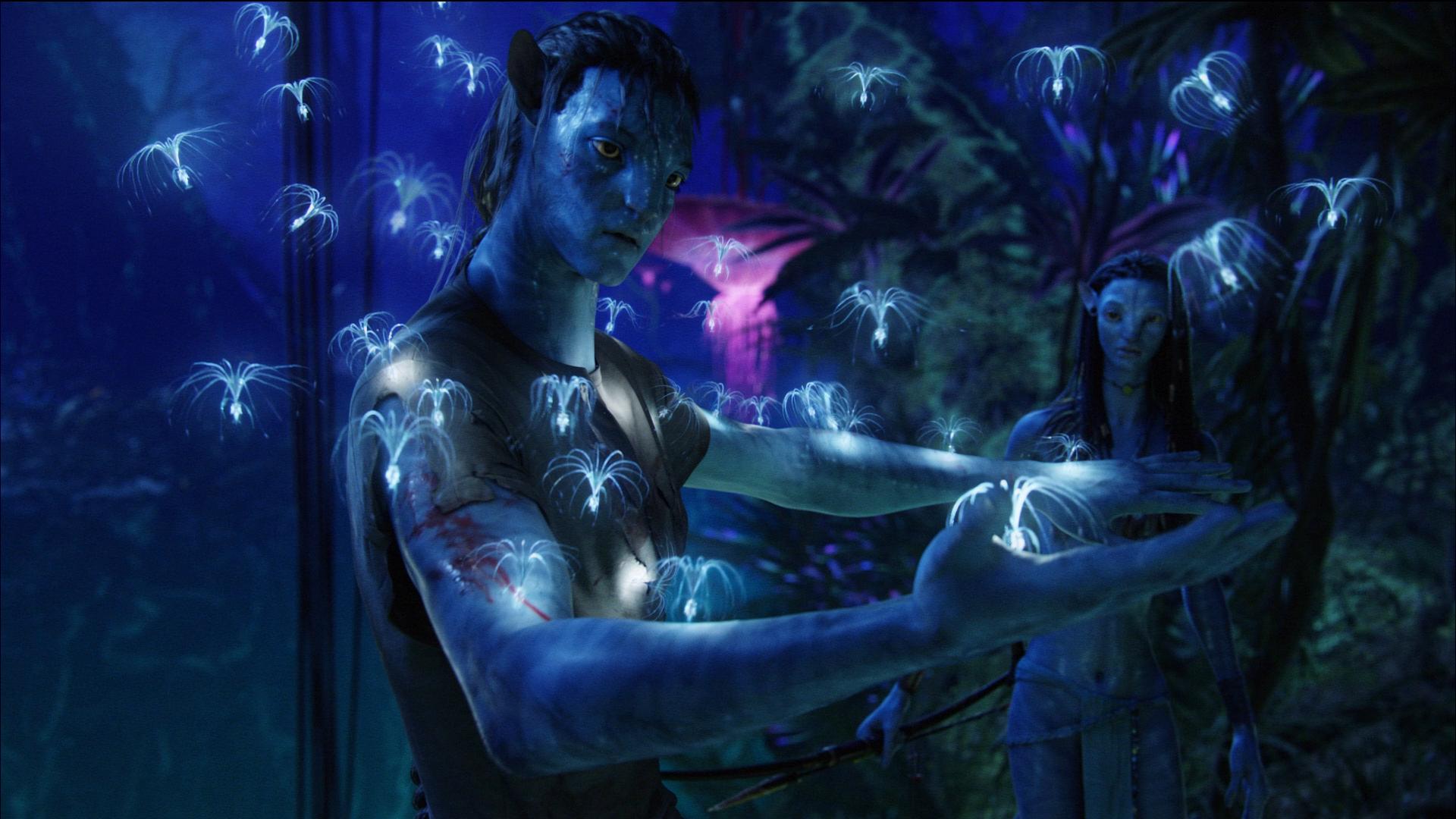 Original Avatar HD Wallpapers for All Avatar Wallpaper Fans | Leawo ...: www.leawo.com/blog/2010/08/original-avatar-hd-wallpapers-for-all...