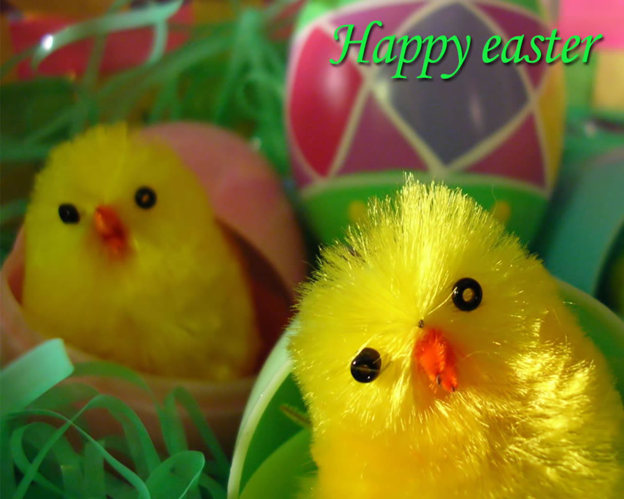 Happy Easter Chicken