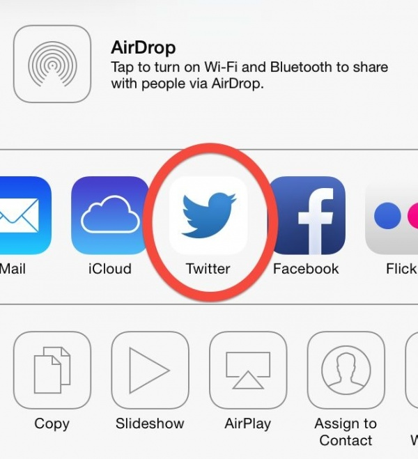 redesigned Twitter icon