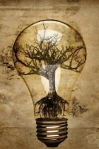 artistique-collection-lumière