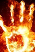 fogo-de palma