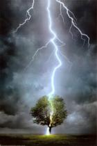 lightning-strikeswp