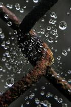 eau bourrelet
