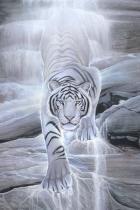 water-spirit