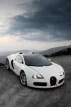 wild-car