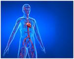 Gratuit Médecine Modèles PowerPoint 16