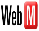 How to convert TS to WebM videos