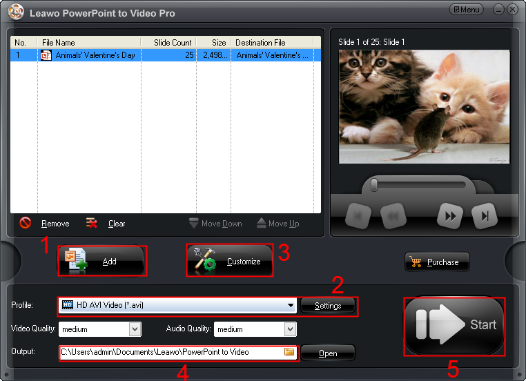 Leawo PowerPoint to Video Pro guide